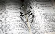 성경, 사랑, 면류관