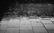 비 rain
