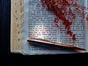 성경, 성경책, 바이블, 말씀,