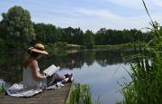 독서 호수 여름 책 소녀 물 여성 자연 야외 휴가 휴식 여자 여가