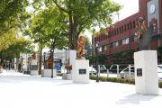 한남대 '하디 오렌지 공원'