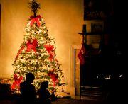 크리스마스 성탄 트리