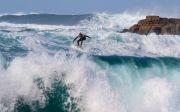 서퍼 파도타기 웨이브 비치 바다 보드 서핑 보드 스포츠 활동적인 라이프 스타일 역동 극복