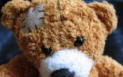 테디 베어 부상 질병 치유 케어 곰