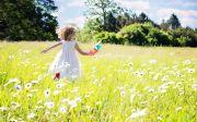 기쁨 소녀 꽃밭 선물 자연 잔디 여름 햇볕 행복 초원 아이 사랑