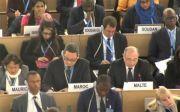 유엔 인권이사회, 북한 인권