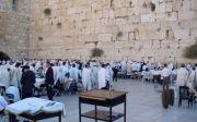 유대인 통곡의 벽