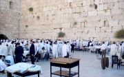 이스라엘 탐방