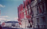 나치 극우