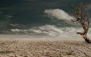 사막 가뭄 작곡 탈수하는 흙 황무지 지구 금이 간 균열 마른 뜨거운 외로움 앙상