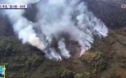 호주 화재, 산불