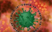 코로나19 바이러스, 전염병, 질병, 세균, 우한폐렴