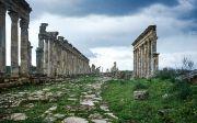 세계 유적 시리아 아파메아 로마 역사 폐허 고고학 고대 Archaeology