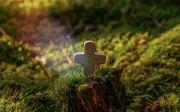 겸손 십자가 작은 예수 그리스도 풀밭 빛 기도 믿음 소망 사랑