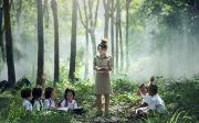 학습 학교 야외 아시아 책 소년 어린이 소녀 레슨 초등학교 읽기