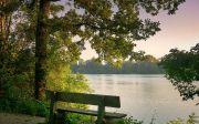 생각, 자연, 풍경, 묵상, 정신