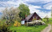 시골집 나무 경로 트레일 집 홈 정원 잔디 풍경 한적한 자연