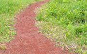 좁은 길 way path 십자가 진짜 참 신앙