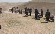 아프가니스탄 탈레반